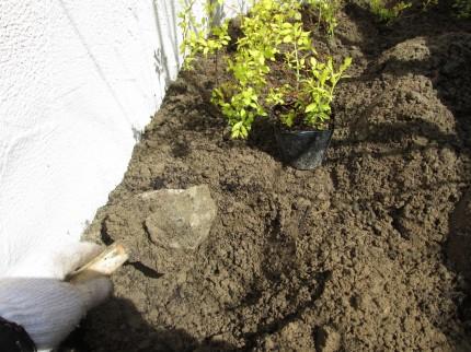 庭土の石撤去