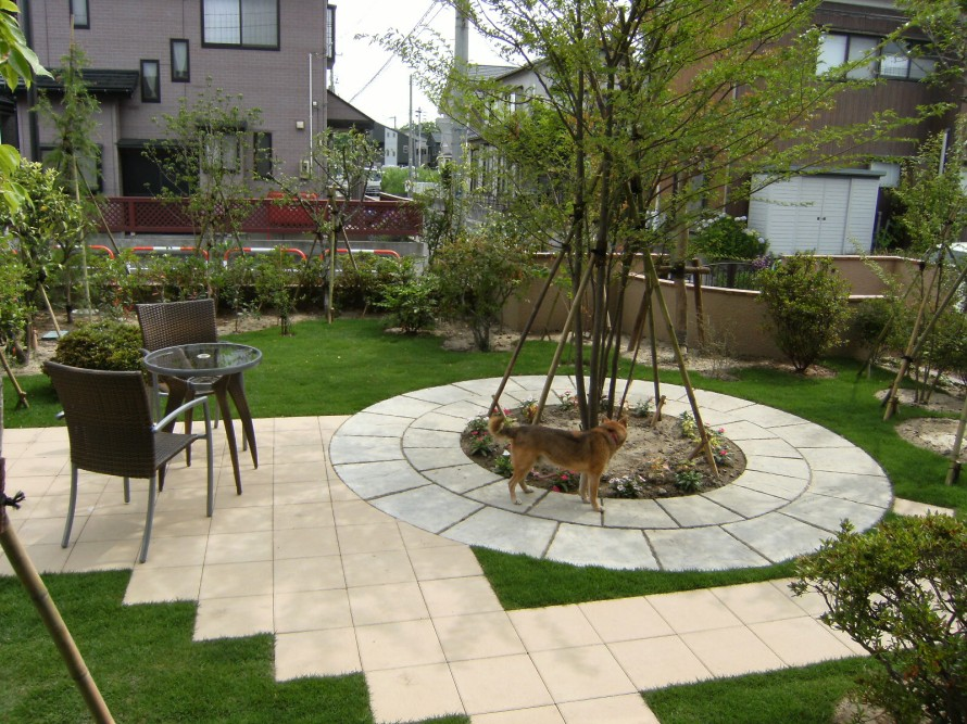 新潟、お庭・拝見 ディーズシェッド(物置)・カンナの前でティータイムを  ガーデンリフォーム 新潟市N様邸