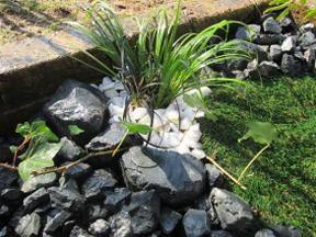 新潟の小さな外構店が本気で目指す日本一の仕事への道のり!第109庭 石でつくる小庭