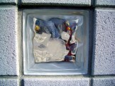 エッチングを施したガラスブロック 新潟市W様邸